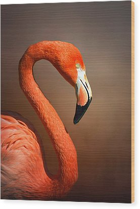 Caribean Flamingo Portrait Wood Print by Johan Swanepoel