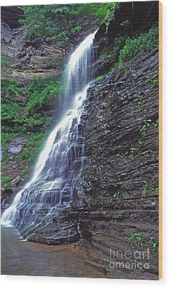 Cathedral Falls In Spring Wood Print by Thomas R Fletcher