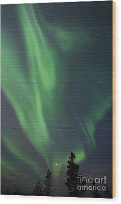 chasing lights II natural Wood Print by Priska Wettstein