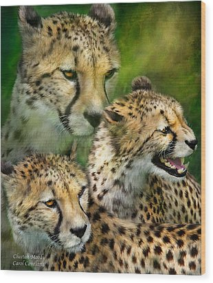 Cheetah Moods Wood Print by Carol Cavalaris