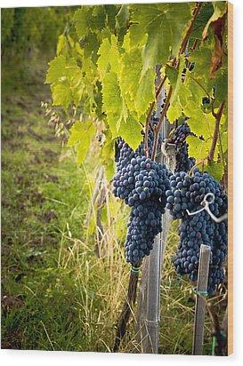 Chianti Grapes Wood Print by Jim DeLillo