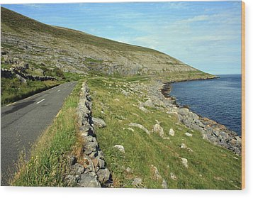 Clare Road Wood Print by John Quinn