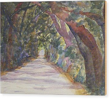 Coffin Point Road Wood Print by Stella Schaefer