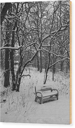 Cold Seat Wood Print by Lauri Novak