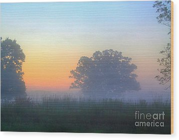 Color And Fog Wood Print by Robert Pearson