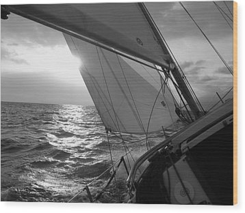 Coquette Sailing Wood Print by Dustin K Ryan