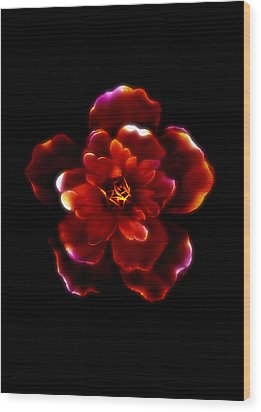 Crimson Bloom Wood Print by Dolly Mohr