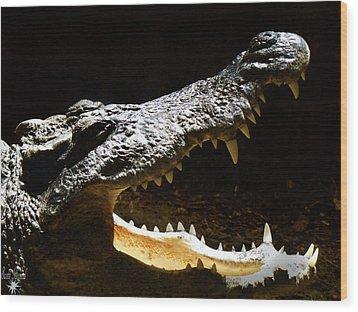 Crocodile Wood Print by Scott Hovind