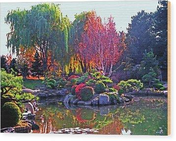 Denver Botanical Gardens 3 Wood Print by Steve Ohlsen