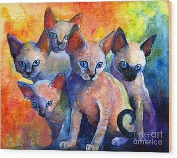 Devon Rex Kitten Cats Wood Print by Svetlana Novikova
