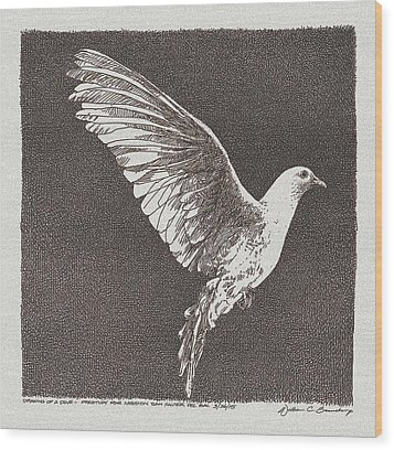 Dove Drawing Wood Print by William Beauchamp