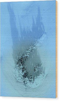 Dreams Of The Sea 2 Wood Print by Susanne Van Hulst