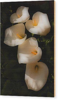Dreamy Lilies Wood Print by Mick Burkey