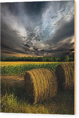 Drought Wood Print by Phil Koch
