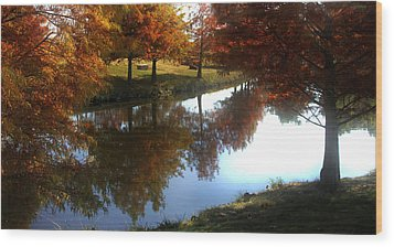 Duck Pond In The Fall Wood Print by Rebecca Lynn Roby