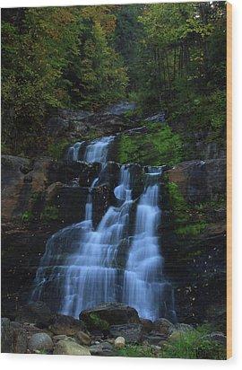 Early Morning Falls Wood Print by Karol Livote