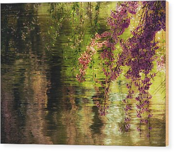 Echoes Of Monet - Cherry Blossoms Over A Pond - Brooklyn Botanic Garden Wood Print by Vivienne Gucwa