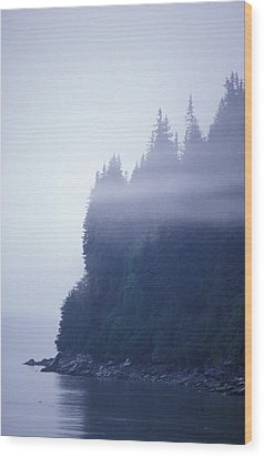 Eerie Seascape With Trees, Cliff Wood Print by Rich Reid