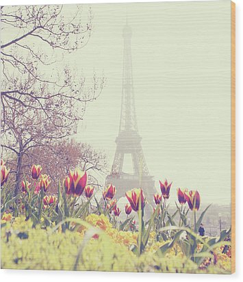 Eiffel Tower With Tulips Wood Print by Gabriela D Costa
