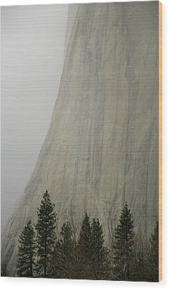 El Capitan, Yosemite National Park Wood Print by André Leopold