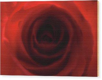 Elegant Rose Wood Print by Bransen Devey