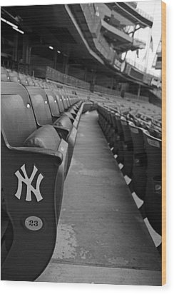 Empty Stadium Wood Print by Michael Albright