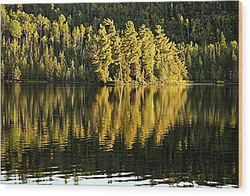 Evening Reflections On Alder Lake Wood Print by Larry Ricker
