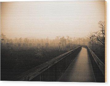 Everglades Boardwalk Wood Print by Gary Dean Mercer Clark