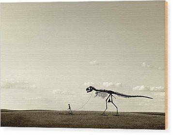 Evolution Wood Print by Todd Klassy