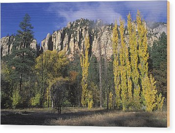 Fall Colors And Red Rocks Near Cave Wood Print by Rich Reid