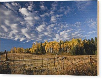 Fall In The Cariboo Wood Print by Detlef Klahm