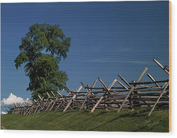 Fenceline At Bloody Lane Wood Print by Judi Quelland