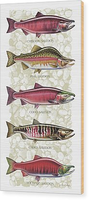 Five Salmon Species  Wood Print by JQ Licensing