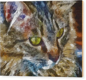 Fletcher Kitty Wood Print by Marilyn Sholin