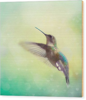 Flight Of Fancy - Square Version Wood Print by Amy Tyler