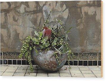 Flower Pot Wood Print by Viktor Savchenko