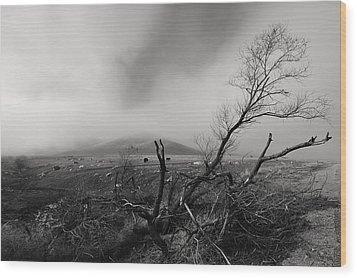 Foggy Grapevine Wood Print by Richard Leon