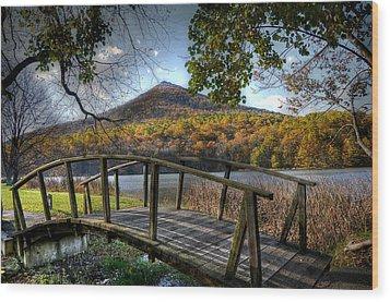 Foot Bridge Wood Print by Todd Hostetter