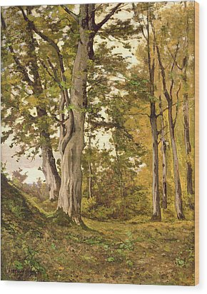 Forest At Fontainebleau Wood Print by Henri-Joseph Harpignies