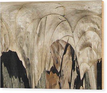 Forest Floor Wood Print by Tim Allen