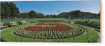 Formal Garden At The University Campus Wood Print by Panoramic Images