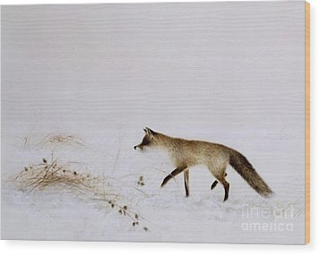 Fox In Snow Wood Print by Jane Neville