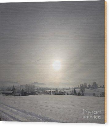 Frosty Midday Wood Print by Angel  Tarantella