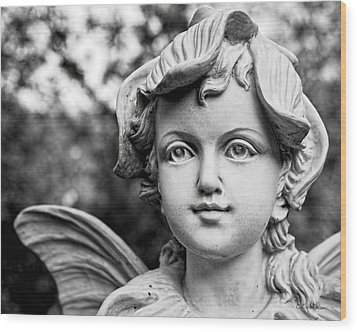 Garden Fairy - Bw Wood Print by Christopher Holmes