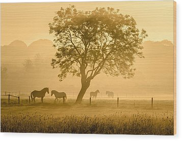 Golden Horses Wood Print by Richard Guijt
