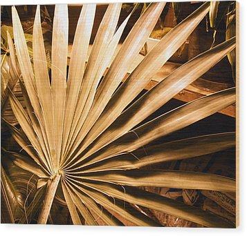 Golden Palm Wood Print by Mindy Newman