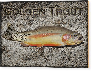 Golden Trout Wood Print by Kelley King