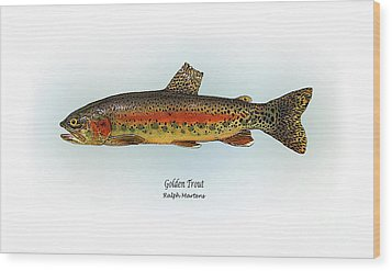 Golden Trout Wood Print by Ralph Martens