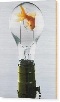 Goldfish In Light Bulb  Wood Print by Garry Gay