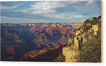 Grand Canyon No. 2 Wood Print by Sandy Taylor